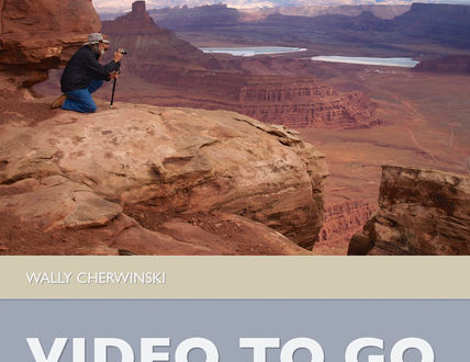 Video to Go cover image